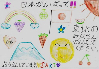 pfj_saki